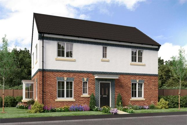 "Thumbnail Detached house for sale in ""Stevenson"" at Sophia Drive, Great Sankey, Warrington"