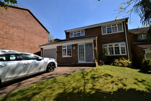 Thumbnail Detached house to rent in Trinity Fields, Farnham, Surrey