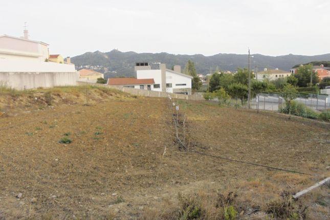 S.Maria E S.Miguel S.Martinho S.Pedro Penaferrim, S.Maria E S.Miguel, S.Martinho, S.Pedro Penaferrim, Sintra