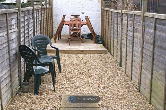 Garden of Duntshill Road, London SW18