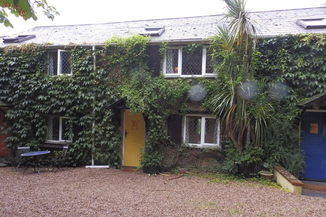 Thumbnail Land to rent in Efford Farm, Yealmpton, Devon