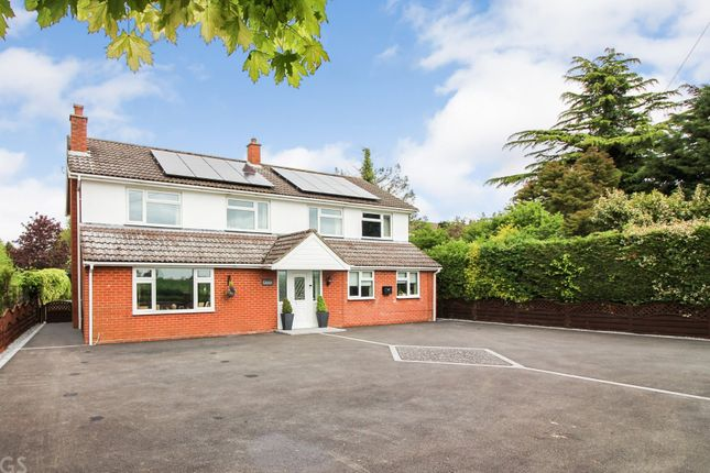 Thumbnail Detached house for sale in Mile Road, Carleton Rode, Norwich