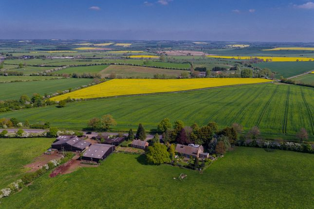 Thumbnail Farm for sale in Dingley, Market Harborough, Leicestershire