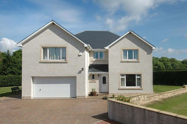 Thumbnail Detached house for sale in Kelso