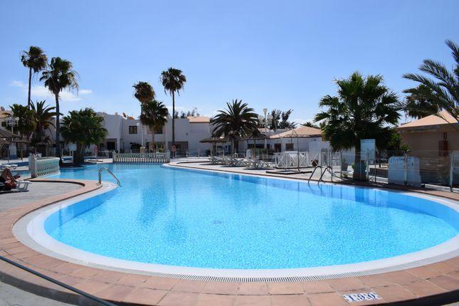 Apartment for sale in Caleta De Fuste, Caleta De Fuste, Antigua, Fuerteventura, Canary Islands, Spain
