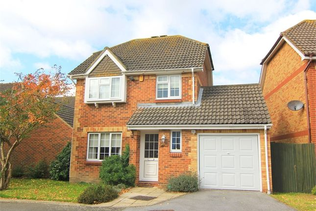 Thumbnail Detached house to rent in Barrow Rise, St Leonards-On-Sea, East Sussex