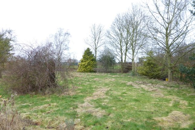 Thumbnail Land for sale in The Croft, Martham Road, Rollesby, Great Yarmouth, Norfolk