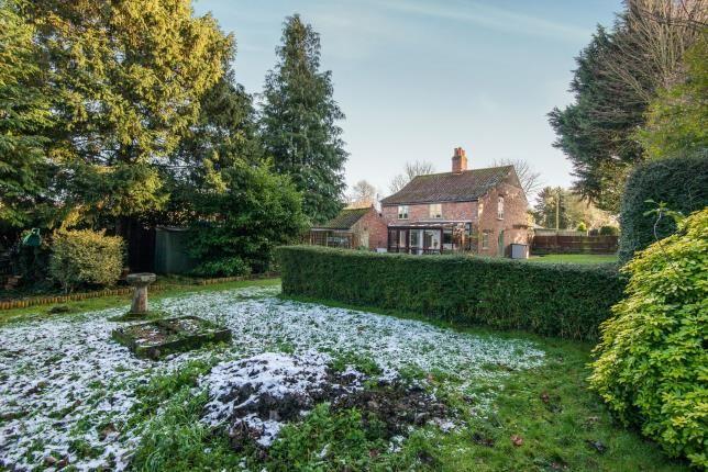 Thumbnail Detached house for sale in Yaxham, Dereham, Norfolk