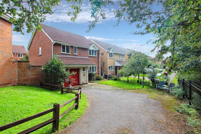 Thumbnail Detached house for sale in Pampas Close, Highwoods, Colchester