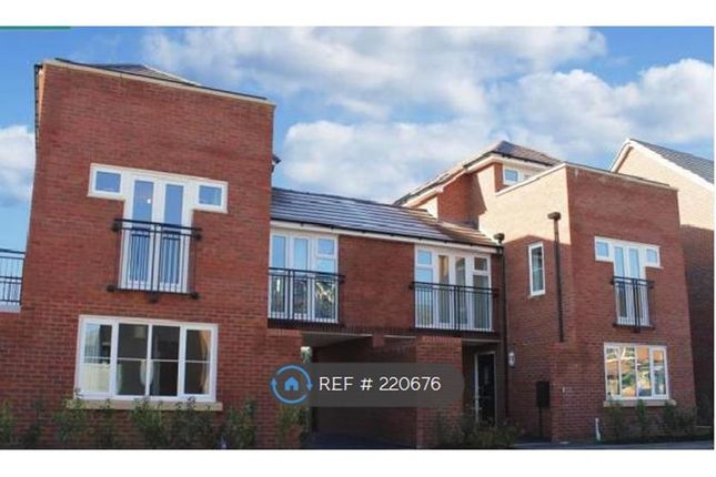Thumbnail Room to rent in West Bromwich, West Bromwich