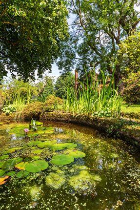 House. Estate Agency Cranleigh Pond