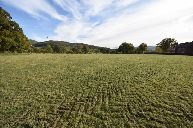 Thumbnail Land for sale in Hall Bank, Churchstoke, Montgomery, Powys