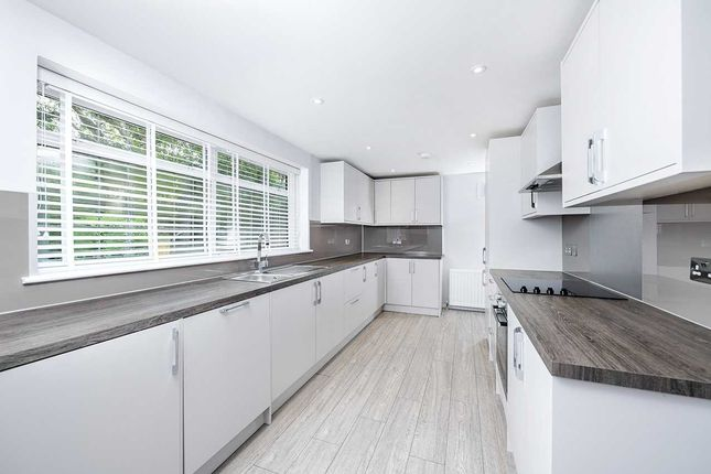 Thumbnail Bungalow to rent in Lime Grove, London