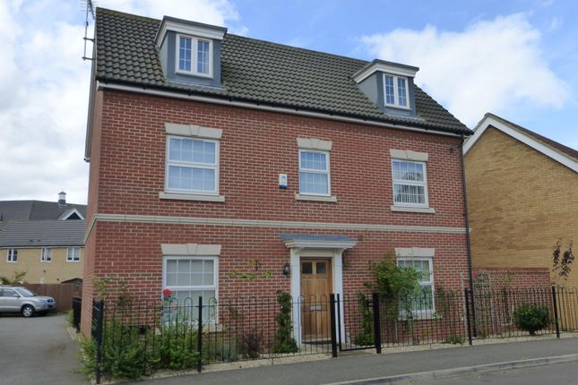 Thumbnail Detached house to rent in Thistle Way, Red Lodge, Bury St. Edmunds