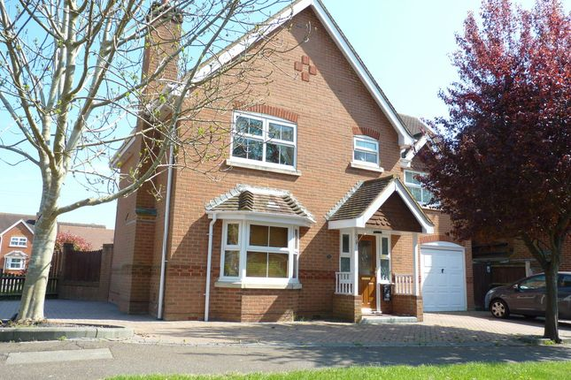 Thumbnail Detached house for sale in Shearwater Avenue, Fareham