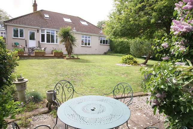 Thumbnail Detached bungalow for sale in Alexandra Road, Kingsdown, Deal