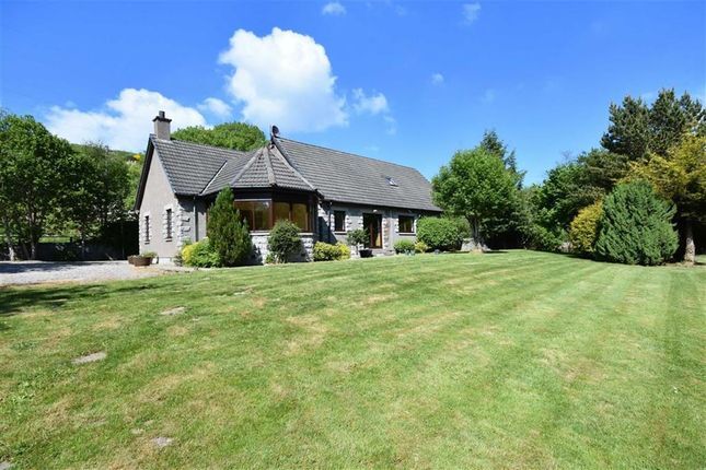 Thumbnail Detached house for sale in Auchindoun, Keith