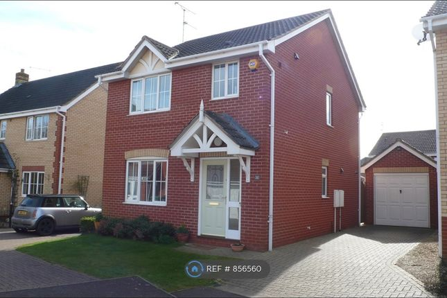 Thumbnail Detached house to rent in Lidgate Close, Peterborough