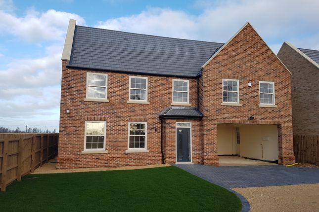 Thumbnail Detached house for sale in Askham Row, Benwick Road, Doddington, Cambridgeshire