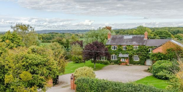Thumbnail Detached house for sale in Much Marcle, Ledbury
