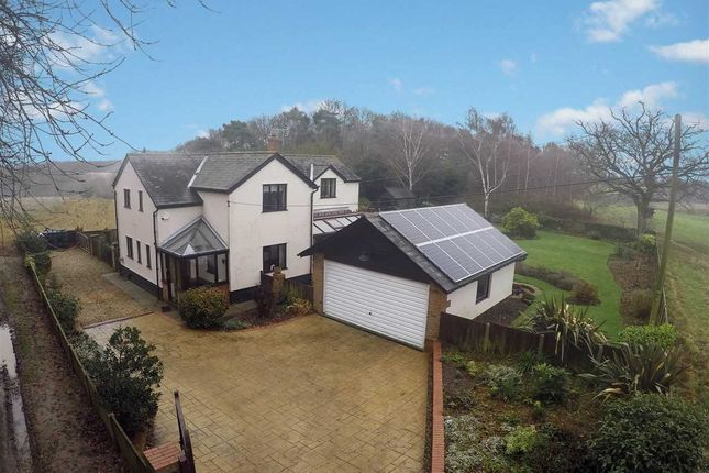 Thumbnail Cottage for sale in Jimmys Lane, Brantham, Manningtree, Essex