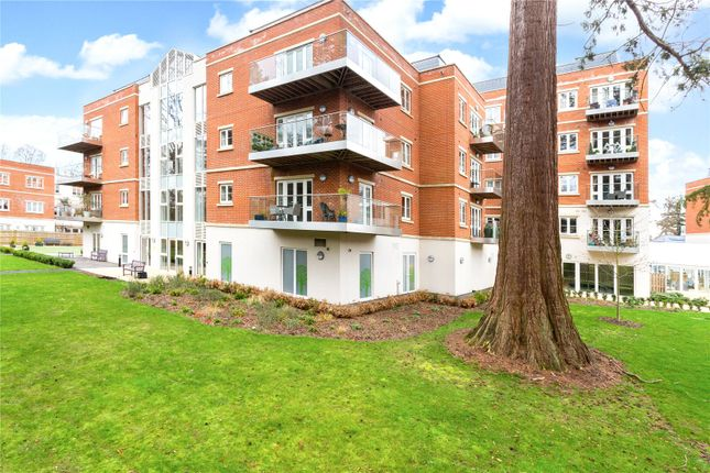 Thumbnail Flat for sale in Cedar Lodge, Lynwood Village, Rise Road, Ascot