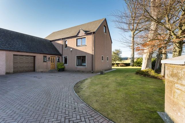 Thumbnail Link-detached house for sale in Carmyllie, Arbroath, Angus