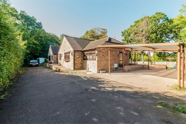 Thumbnail Detached bungalow for sale in Mount Pleasant Lane, Bricket Wood, St Albans, Hertfordshire