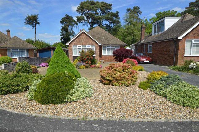 Thumbnail Detached bungalow for sale in Derwent Drive, Tunbridge Wells