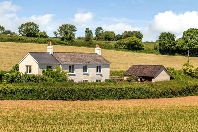 5 bed detached house for sale in Payhembury, Honiton, Devon EX14