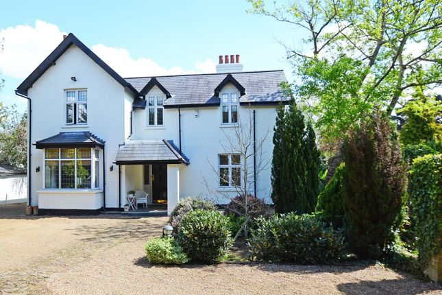 Thumbnail Detached house to rent in Ashley Road, Walton On Thames
