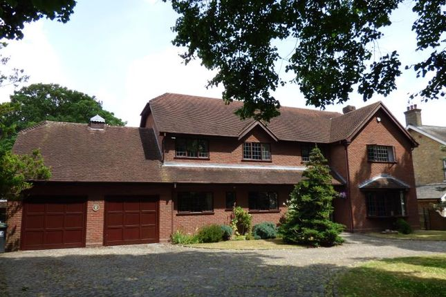 Thumbnail Detached house for sale in Stondon Road, Ongar, Essex