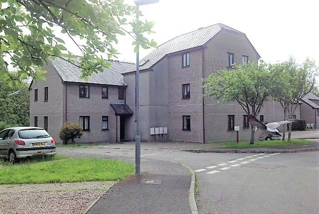 Thumbnail Flat to rent in Pavlova Court, Liskeard