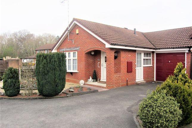 Thumbnail Detached bungalow for sale in Robin Gardens, Totton, Southampton