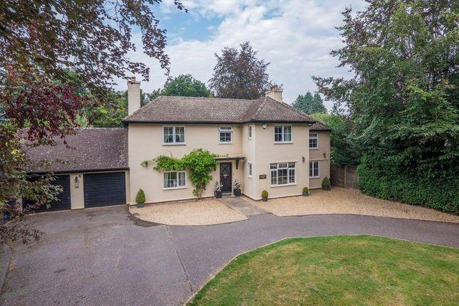 Thumbnail Detached house for sale in Hardwick Lane, Bury St. Edmunds