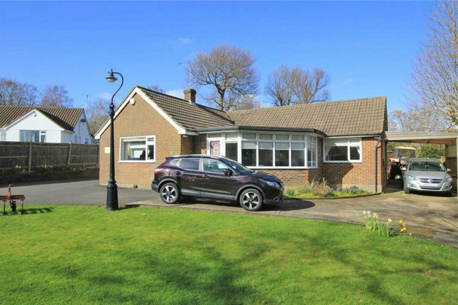 Thumbnail Detached bungalow for sale in 59A Westfield Lane, St Leonards-On-Sea, East Sussex