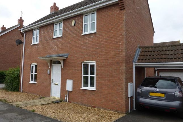Thumbnail Detached house to rent in Cunningham Road, Peterborough