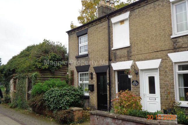 Thumbnail Cottage to rent in Church Walk, St Neots