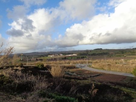 Thumbnail Land for sale in Bombarral, Silver Coast, Portugal