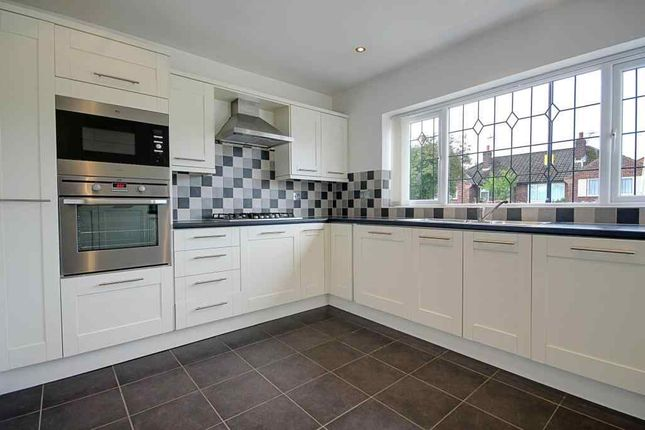 Thumbnail Semi-detached bungalow to rent in Derwent Road, Harrogate