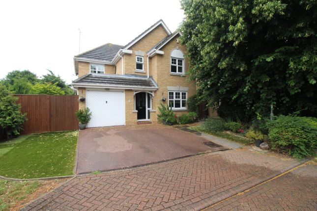 Thumbnail Detached house for sale in Royal Road, Dartford