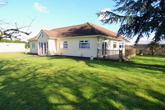 Thumbnail Bungalow for sale in South Road, North Somercotes, Louth