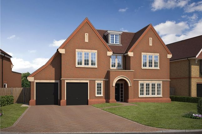 Thumbnail Detached house for sale in Priest Hill Close, Epsom