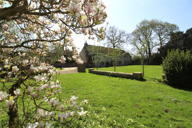 Thumbnail Detached house to rent in Down Ampney, Cirencester, Glos