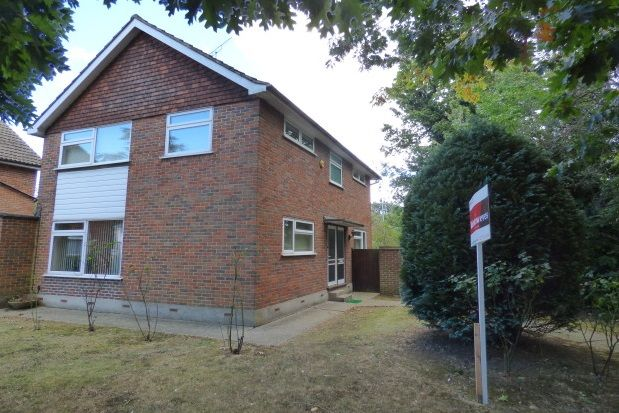 Thumbnail Property to rent in Normanhurst, Hutton, Brentwood