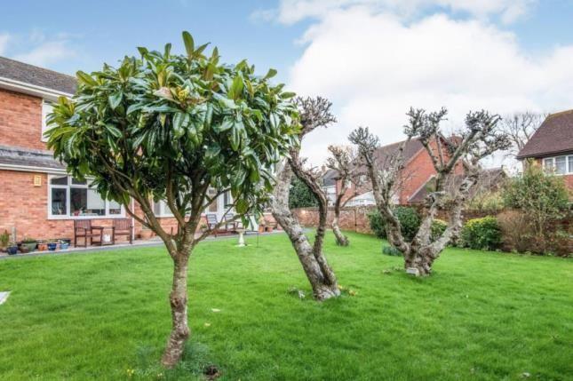 Communal Gardens of Long Causeway, Exmouth, Devon EX8