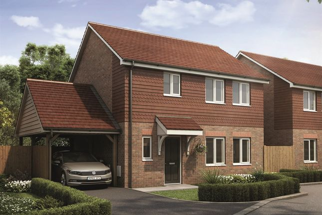 """Thumbnail Detached house for sale in """"The Whitehall"""" at Limes Place, Upper Harbledown, Canterbury"""