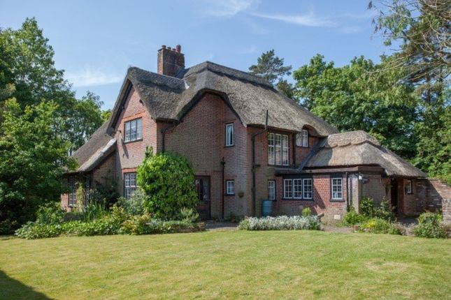 Thumbnail Detached house for sale in Taverham Road, Taverham, Norwich