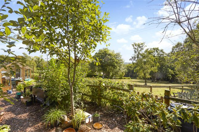 Picture No. 25 of Woodland Cottages, Park Lane, Brook, Godalming GU8