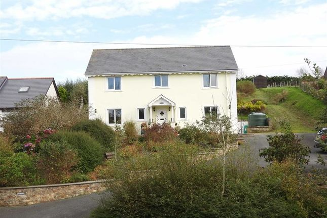 Thumbnail Detached house for sale in Ferwig, Cardigan
